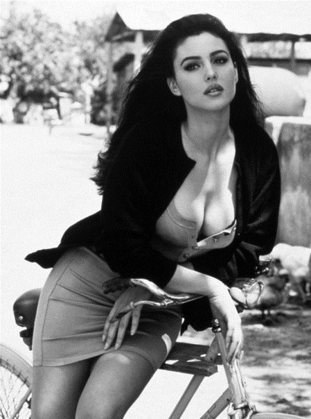 monica bellucci dobermann