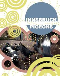 innsbruck pigeons