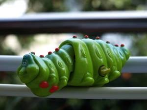 A Caterpillar p2