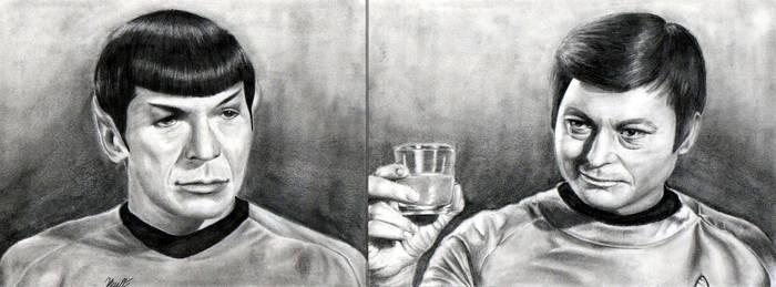I've Missed You, Spock