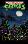 Teenage Mutant Ninja Turtles Cartoon Intro Poster