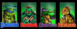 All 4 Turtle Portraits