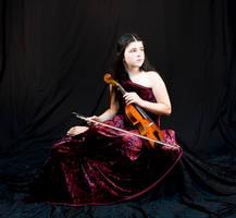 Violin 8 by JimbosbabyStock