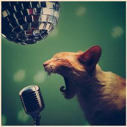 Rock'N'Roll, baby