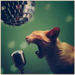 Rock'N'Roll, baby by gre3g