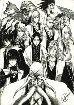 Bleach with Gotei 13 Captains