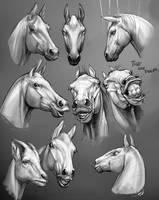 Horse Head Dump