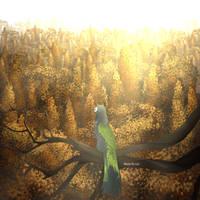 Ikkit - When Autumn falls