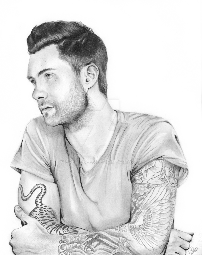 Adam Levine By Breaisbees On DeviantArt