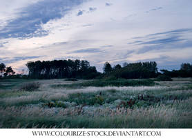 Landscape Stock 13 by Colourize-Stock