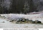 Landscape Stock 21