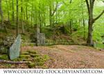 Landscape Stock 35