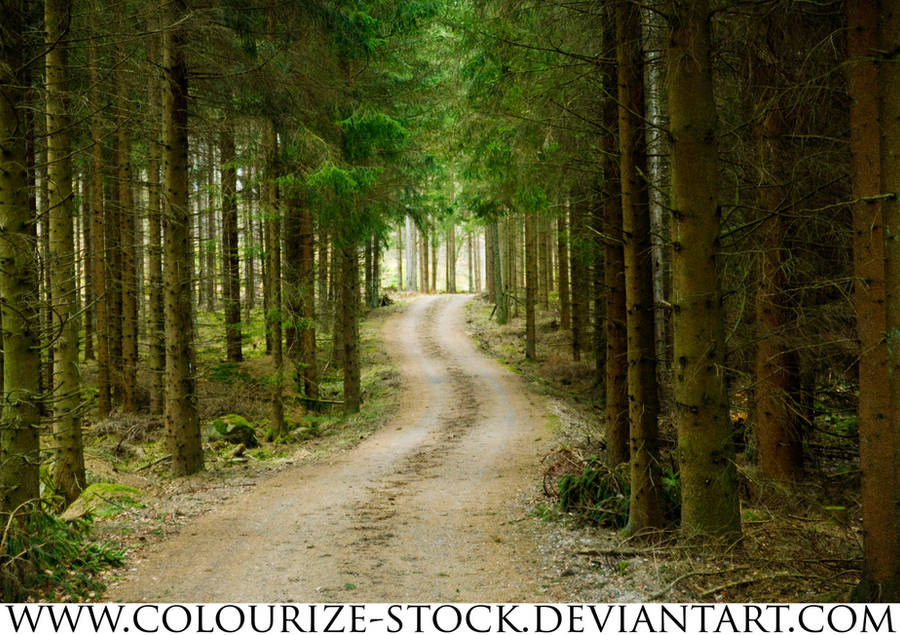 Landscape Stock 58 by Colourize-Stock