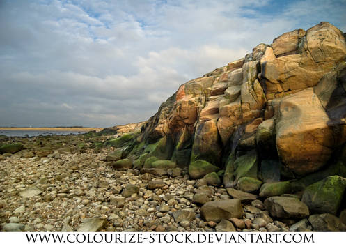 Landscape stock 60