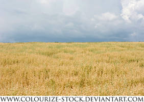 Landscape Stock 84 by Colourize-Stock