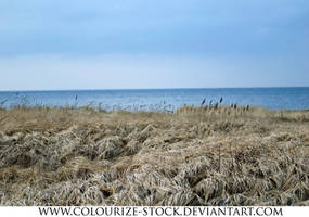 Landscape Stock 86 by Colourize-Stock