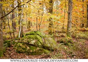 Landscape 103 by Colourize-Stock