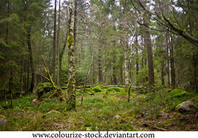Landscape Stock 120 by Colourize-Stock