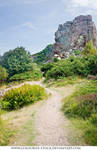 Landscape Stock 152