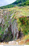 Landscape Stock 154
