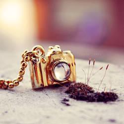 Nature Photographer by Borboletra