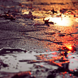 listen to the rain by Borboletra