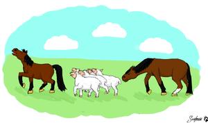 Barney and the Sheep