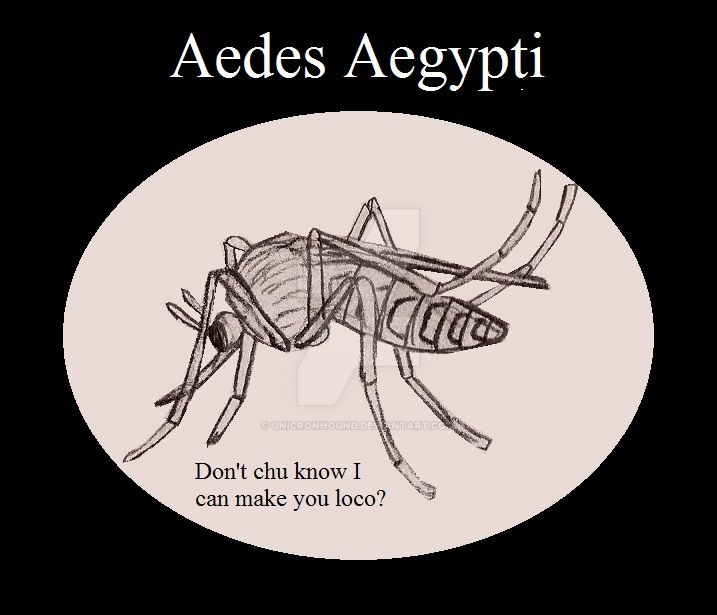 Aedes Aegypti, Insect Buddies series 2 by UnicronHound