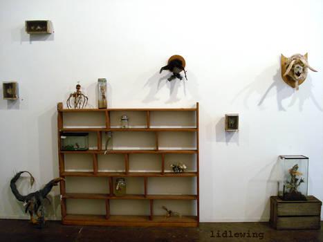 specimen install det1