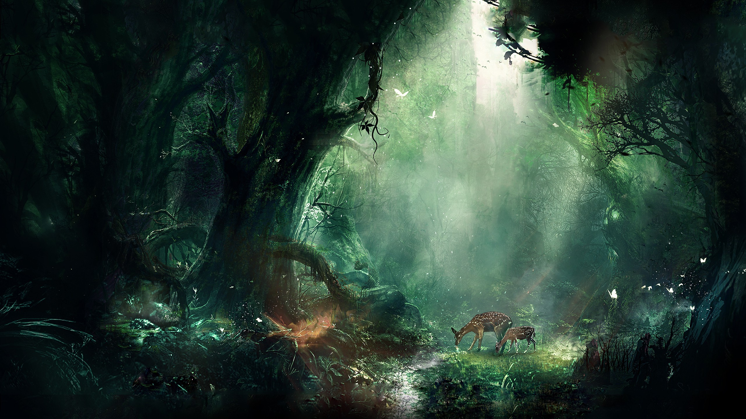 Digital Art Nature Wallpaper 2560 X 1440 By Fay0773813636 On Deviantart