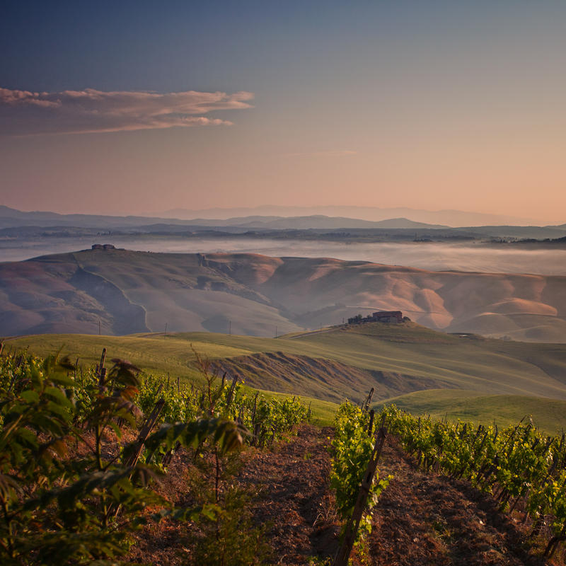 terre di toscana 0413 by bagnino