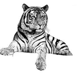 wip2 Tiger 2.3.16 by QexL