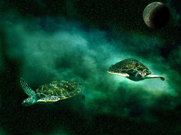 Space Turtle by gabriela2006