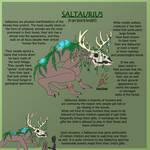 Saltaurius Species by BunnyBoi93