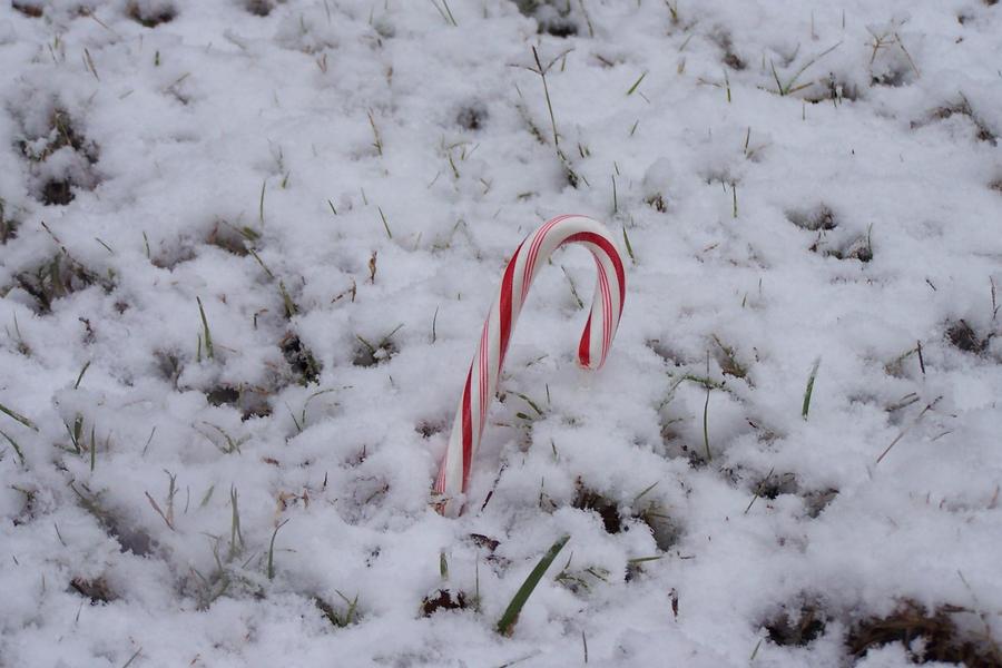 Peppermint Winter by YagamiDragon