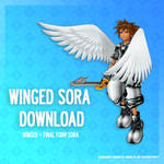 Winged Sora [Final Form version] - DL