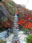 Korean Buddhist Temple in Fall