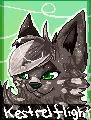 Kestrelflight FREE avatar by Karaikou