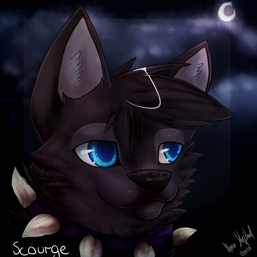 Images Of Scourge Warrior Cats Drawn