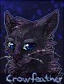 Crowfeather FREE avatar by Karaikou