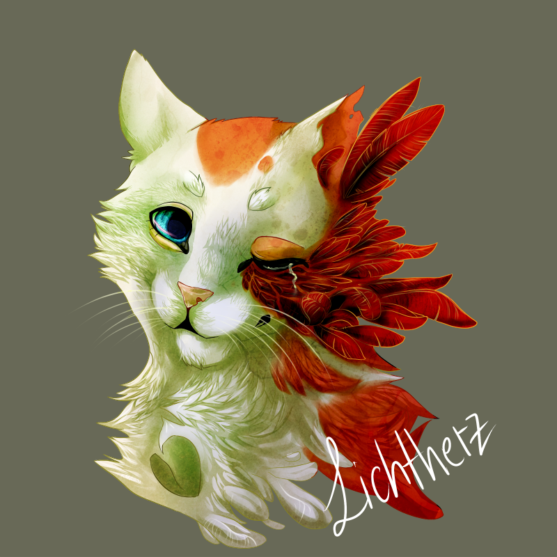 Cat With A Flower On It S Head