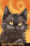 Graystripe avatar by Karaikou