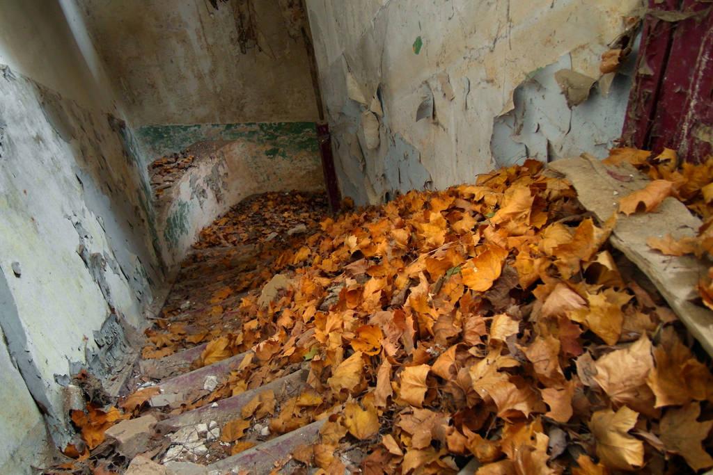 Autumn stairs by SimonGresko