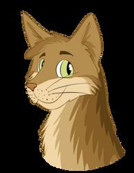 Cat by CrusierPL