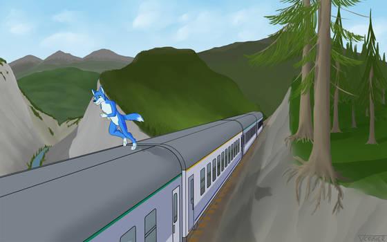Mountain Express