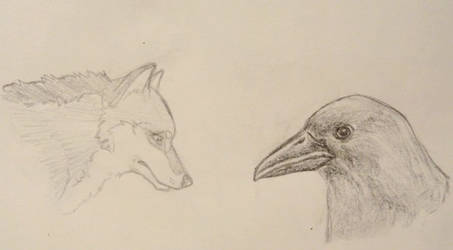 Wolf and raven sketches