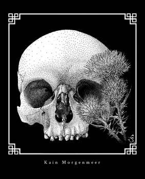 Skull and plumeless thistles / Vanitas II