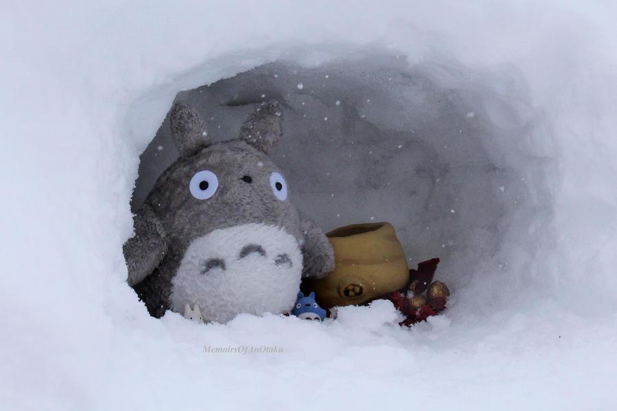 Totoro, is it Spring yet? by MemiorsOfAnOtaku