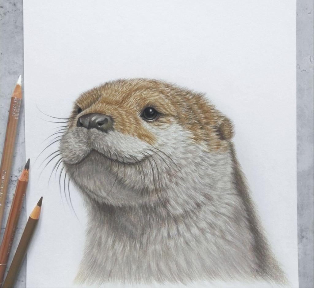 Otter :)