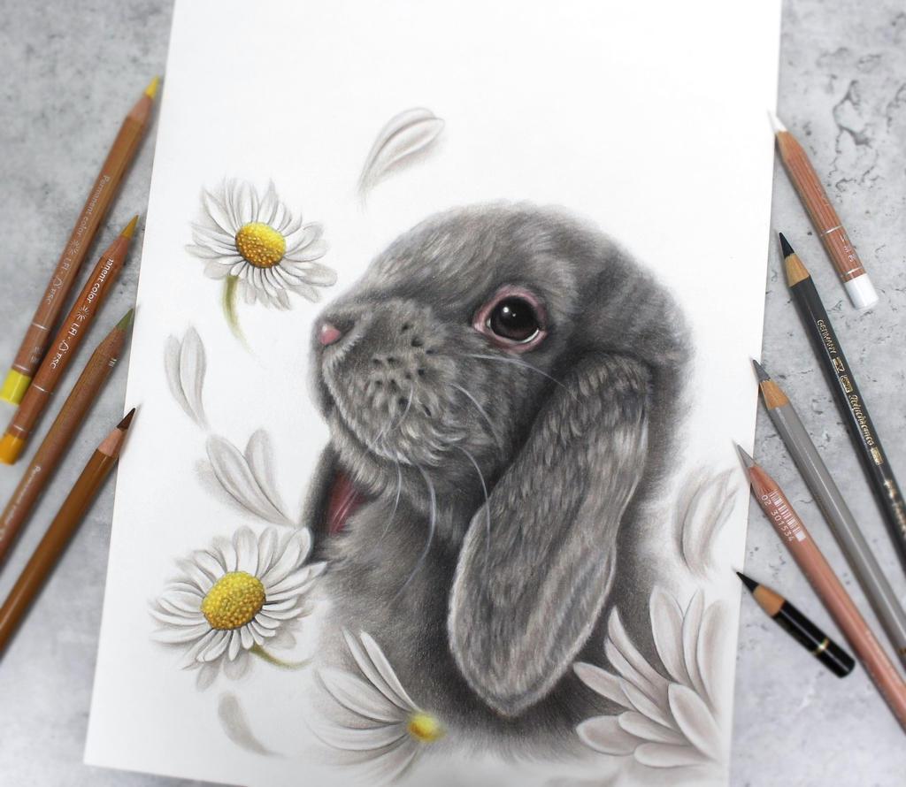 Bunny:)